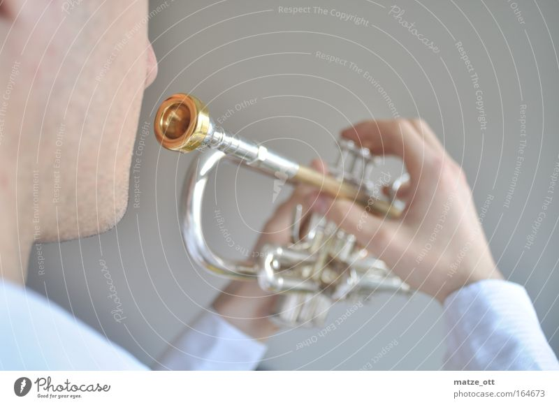 play the trumpet Colour photo Interior shot Studio shot Neutral Background Day Deep depth of field Half-profile Forward Make music Man Adults Hand Fingers 1