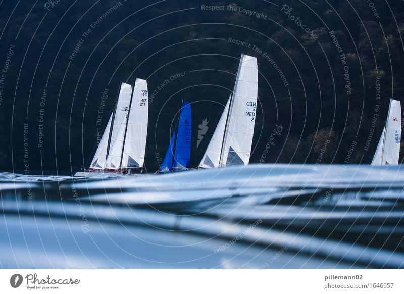 sailing Aquatics Sailing Waves Sailboat Esthetic Maritime Blue Black Calm Contentment Movement Relaxation Leisure and hobbies Moody Catamaran Subdued colour