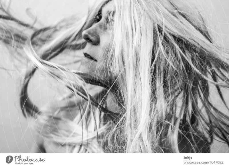 swing Lifestyle Style Hair and hairstyles Woman Adults Face 1 Human being Blonde Long-haired Movement Flying Androgynous Spirited Swing Headbanging