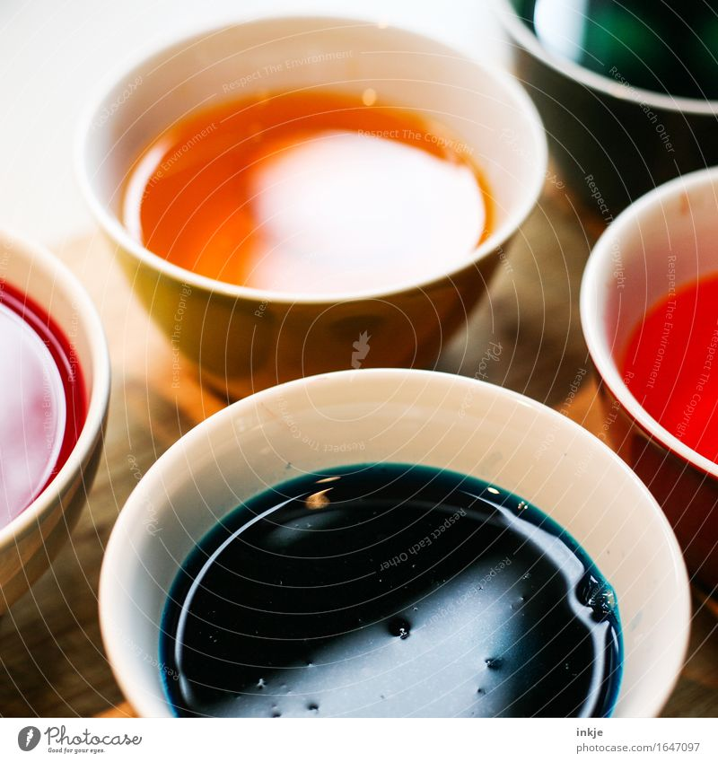 Round | Paint pots Leisure and hobbies Bowl Dye Colour Easter egg colour Fluid Multicoloured Creativity Dyeing Colour photo Interior shot Close-up Deserted Day