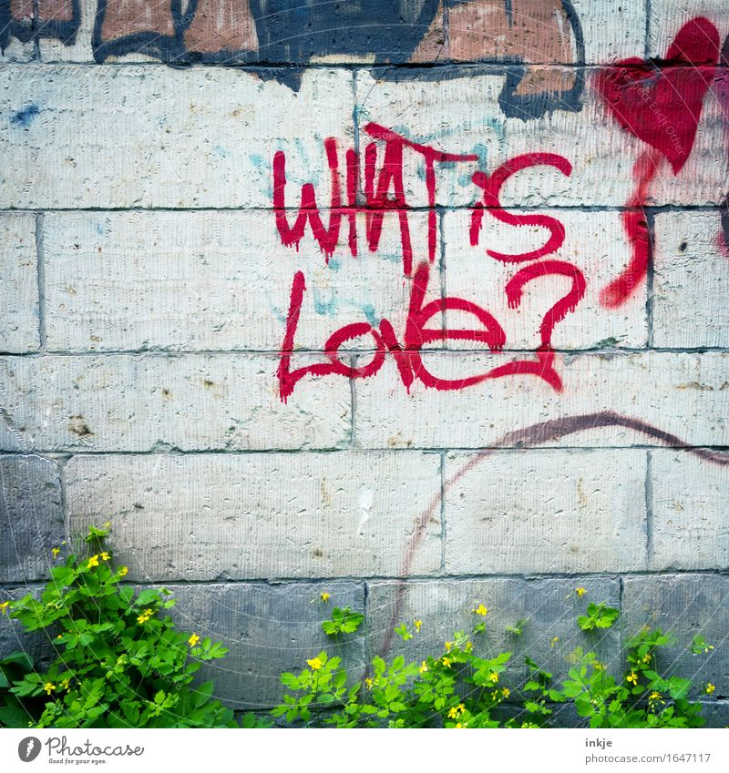 Love is... Lifestyle Deserted Wall (barrier) Wall (building) Sign Characters Graffiti Heart Question mark Red Infatuation Romance Ask Meaning Bright background