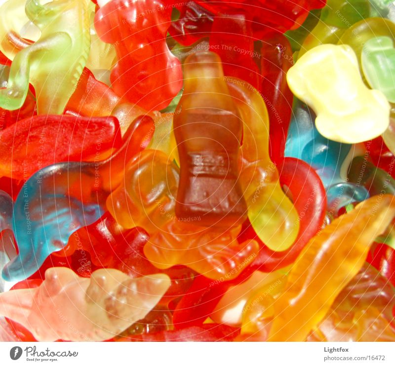 Nutrition Sweet Fat Delicious Candy Rubber Gummy bears Dinosaur Calorie Cola Fatty food