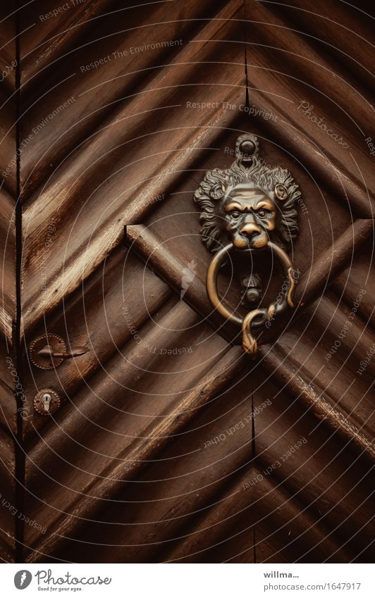 That's the pot! Living or residing Door Front door Knocker Wood Brown Lion's head Brass Lock Decoration Rustic Closed Door handle Colour photo Exterior shot