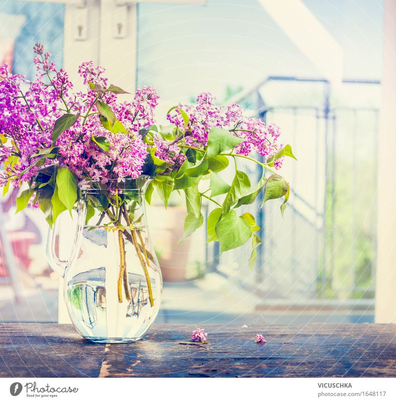 Lilac flower strass in glass vase on the window Lifestyle Style Design Living or residing Garden Interior design Decoration Table Living room Nature Plant