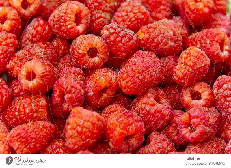 Background fresh red raspberry Vegetarian diet Fresh Red Raspberry sweet Berries food healthy Raw Organic garden stuff Colour photo