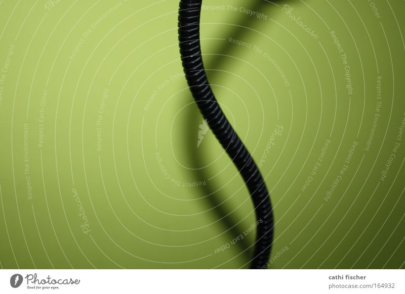 Green Black Colour Wall (building) Wall (barrier) Metal Art Decoration Meandering Drop shadow