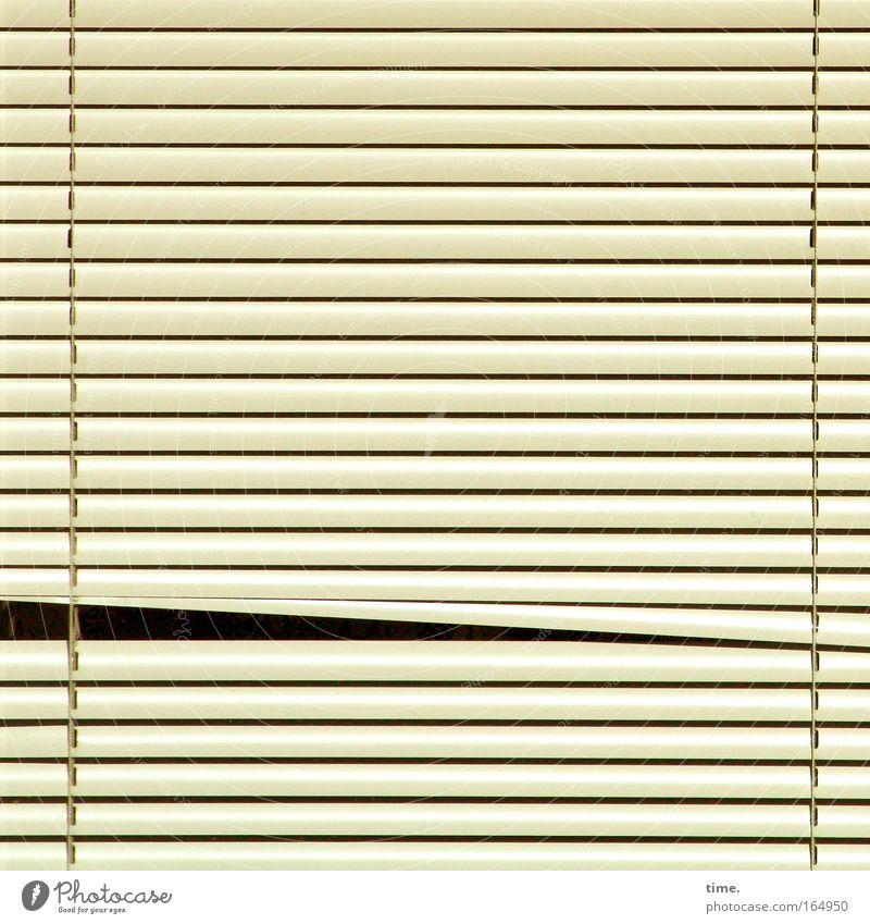 Window Sleep Closed Safety Protection Beige Parallel Vista Checkmark Venetian blinds Spy Slit Roller blind