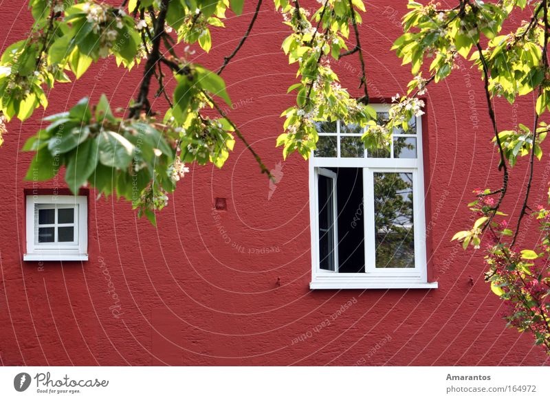 Nature Beautiful Summer Joy House (Residential Structure) Relaxation Wall (building) Spring Garden Happy Wall (barrier) Air Contentment Flat (apartment) Weather Climate