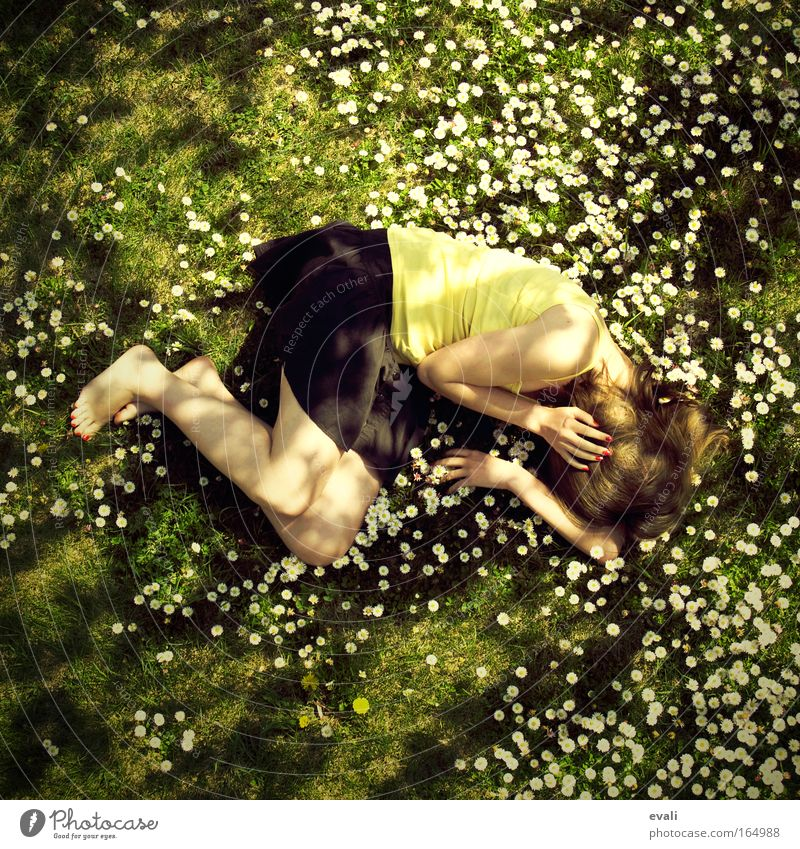 Woman Human being Youth (Young adults) Flower Green Yellow Meadow Feminine Spring Garden Adults Lie Beautiful weather Young woman