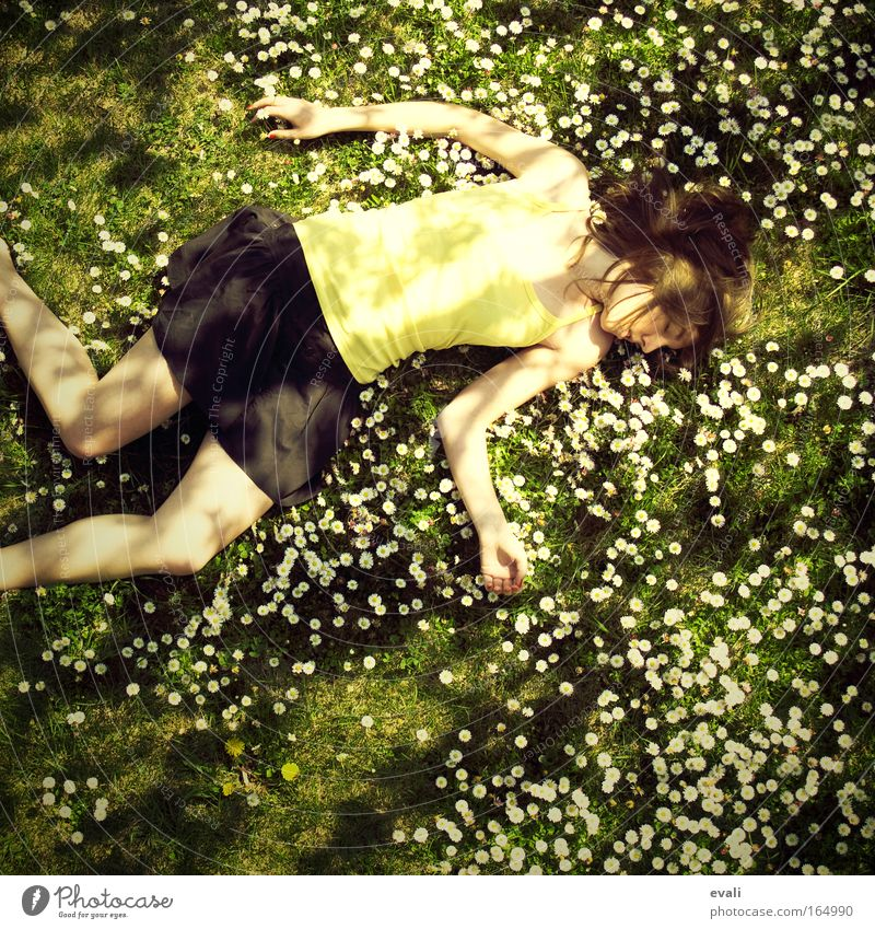 Woman Human being Youth (Young adults) Meadow Feminine Grass Spring Garden Adults Lie Young woman