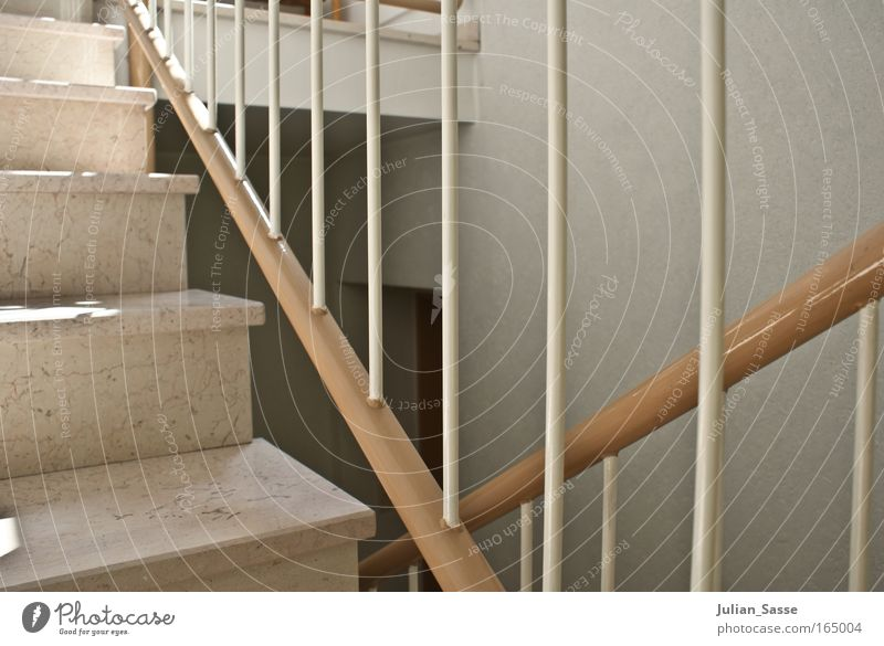 Architecture Building Contentment Elegant Stairs Esthetic Manmade structures Handrail Staircase (Hallway)