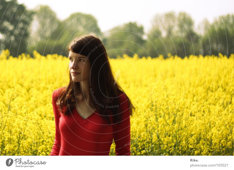 Woman Human being Nature Youth (Young adults) Plant Summer Loneliness Yellow Colour Feminine Spring Freedom Happy Dream Landscape Field