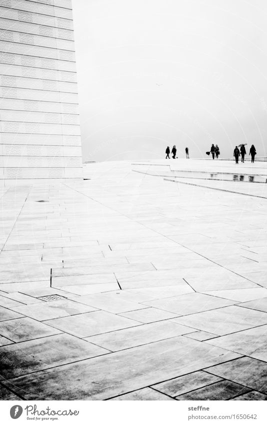Human being Calm Sadness Rain Fog Bad weather Opera house Visitor Timeless Oslo Spatial impression