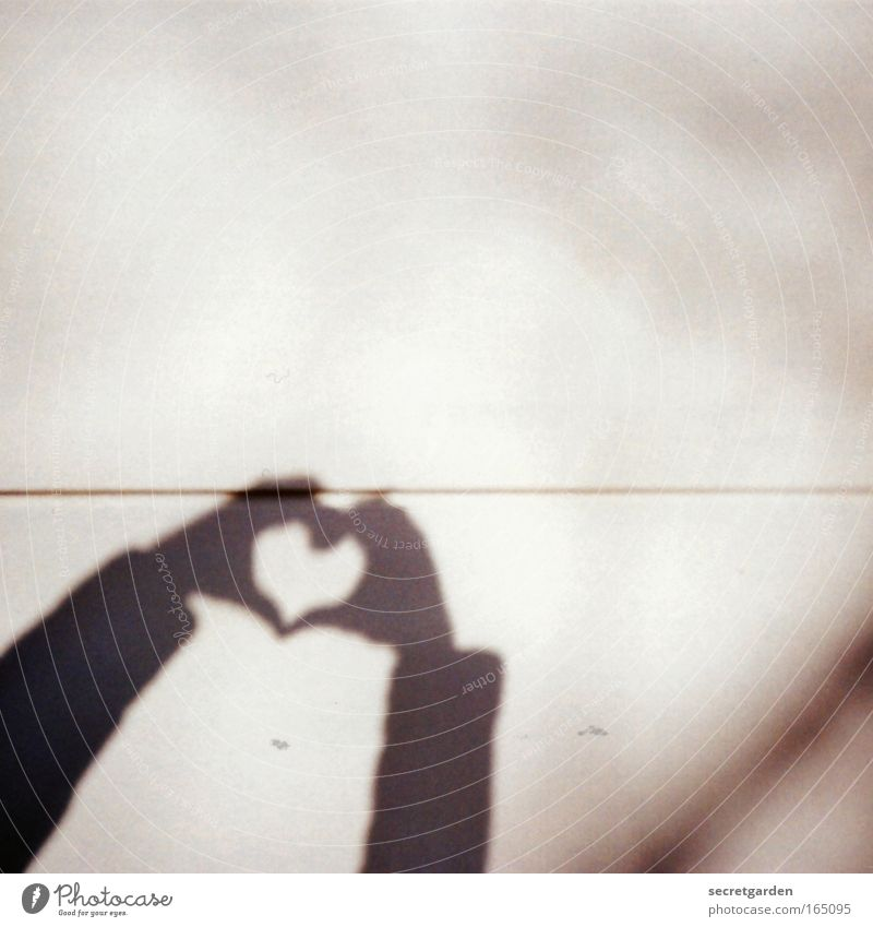Hand White Love Wall (building) Emotions Happy Gray Line Brown Together Heart Arm Lomography Concrete Fingers Future