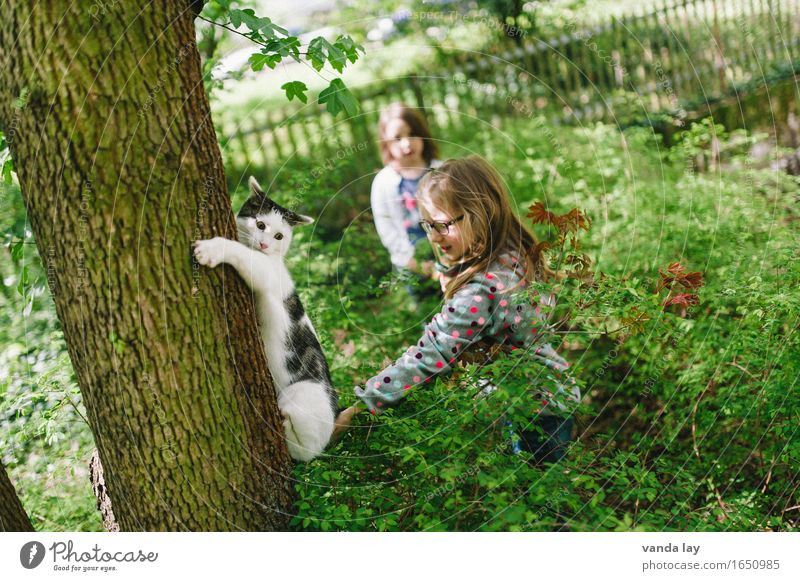 on the run Garden Human being Child Girl Brothers and sisters Friendship 2 3 - 8 years Infancy Cat 1 Animal Hang Help Responsibility Fear Tree Park Playing Flee