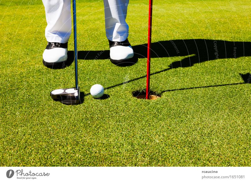 Golfer on the putting green, preparing to put Joy Relaxation Playing Summer Sports Golf course Man Adults Feet Pants Footwear Stand Green White Loneliness ball