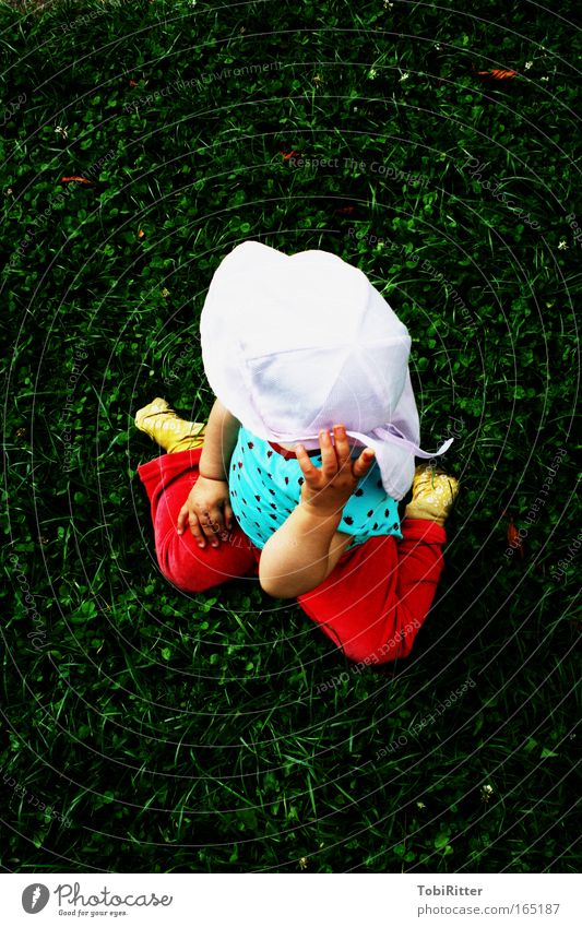 Human being Child Girl Summer Colour Environment Meadow Playing Grass Think Infancy Contentment Glass Trip Observe Curiosity