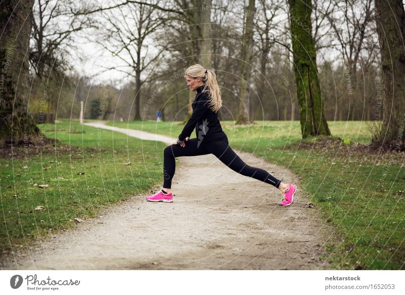 attarcive woman stretching in park Lifestyle Body Wellness Winter Sports Human being Woman Adults Tree Park Lanes & trails Fitness Athletic Practice healthy