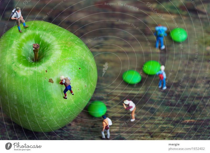 Miniature worlds - Apple ascent Food Fruit Nutrition Organic produce Vegetarian diet Diet Leisure and hobbies Vacation & Travel Tourism Trip Adventure Mountain