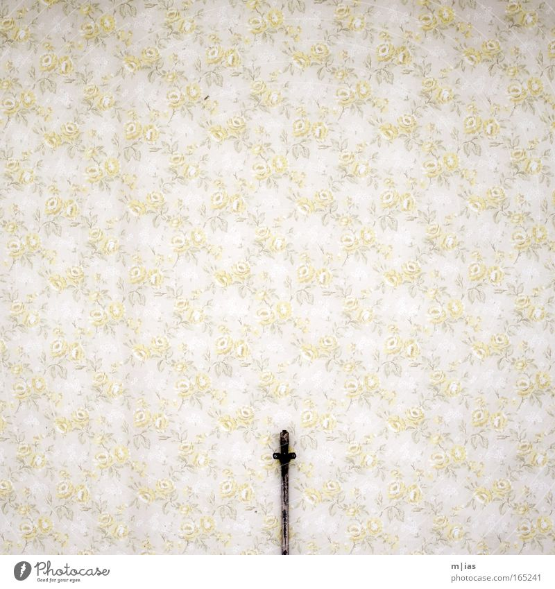 Old Flower Yellow Wall (building) Sadness Wall (barrier) Brown Room Dirty Flat (apartment) Rose Esthetic Retro Authentic Interior design Wallpaper