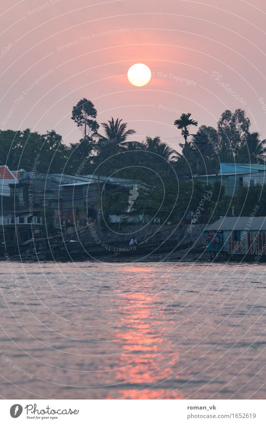 Good Morning Vietnam! Water Moody Sunrise River Dawn Reflection Orange Travel photography Coast Palm tree Dreary Colour photo Exterior shot Copy Space bottom