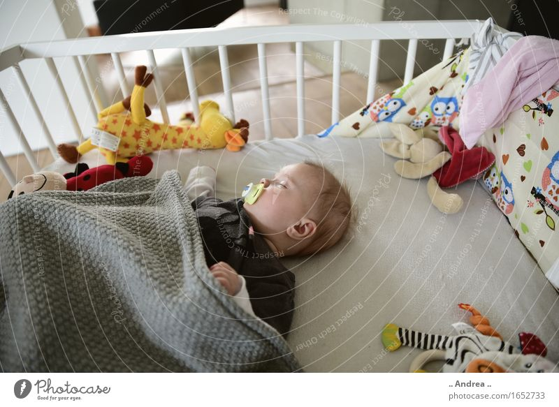Human being Calm Feminine Happy Dream Contentment Lie Baby Sleep 0 - 12 months Rest Soother Stationary Good night