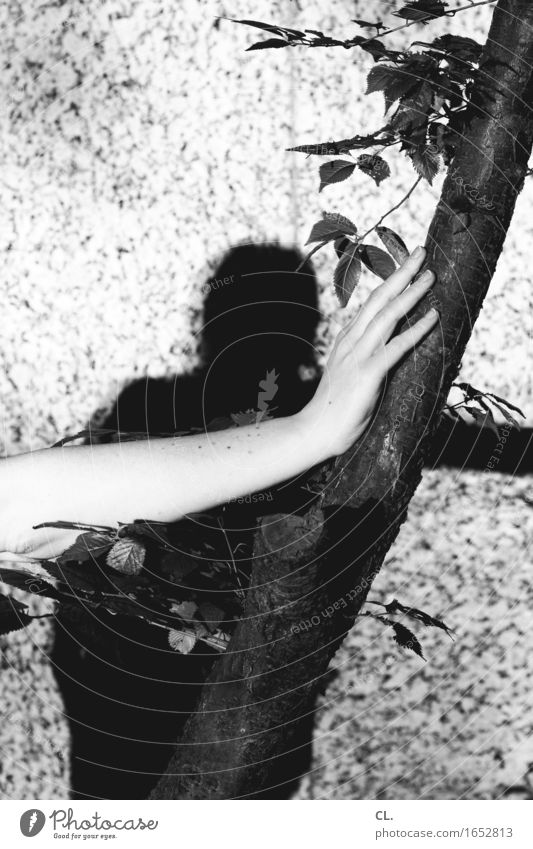 hand on tree Human being Feminine Woman Adults Life Arm Hand Fingers 1 Environment Nature Tree Wall (barrier) Wall (building) To hold on Black & white photo