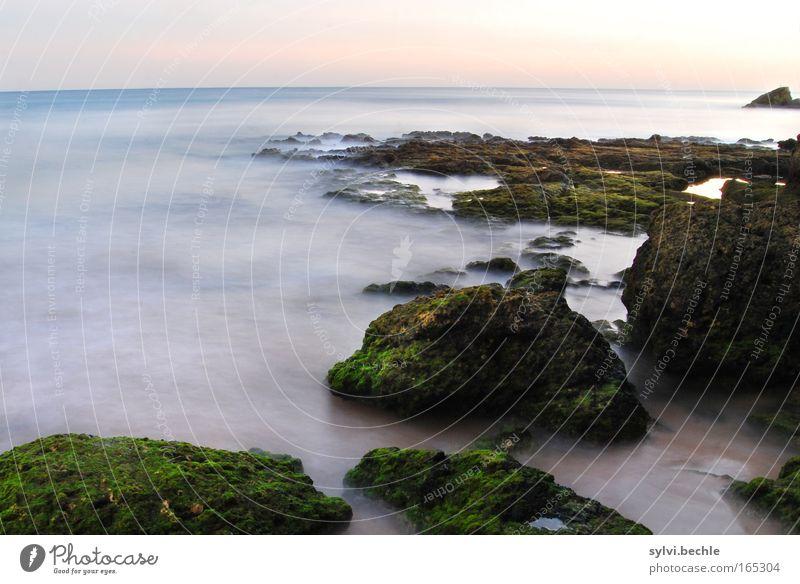 silent II Water Fog Ocean Atlantic Ocean Free Infinity Soft Blue Romance Flow Far-off places Algarve Carvoeiro Rock Freedom Moss Movement Sunset Twilight Calm