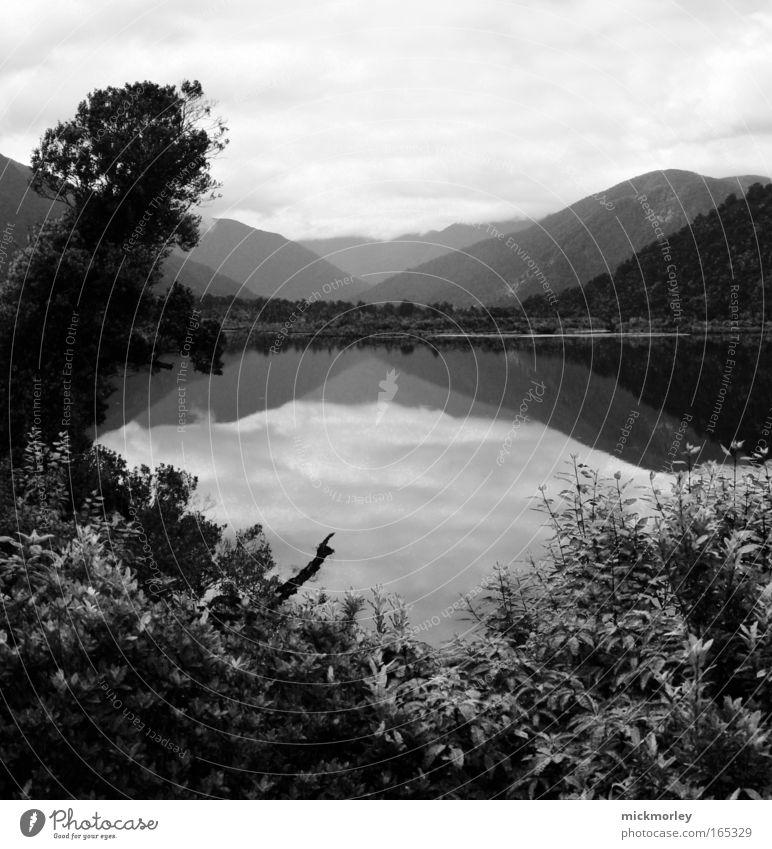 Paradise in Black and White Black & white photo Exterior shot Deserted Day Contrast Sunlight Wide angle Life Well-being Contentment Senses Relaxation Calm