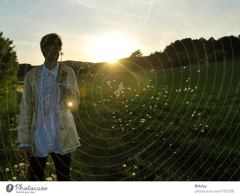 Human being Man Nature Youth (Young adults) Sky Sun Plant Summer Forest Meadow Grass Mountain Spring Freedom Landscape Field