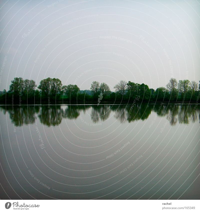Sky Nature Water Tree Calm Far-off places Relaxation Landscape Horizon Contentment Bushes River To enjoy River bank Symmetry Surface of water