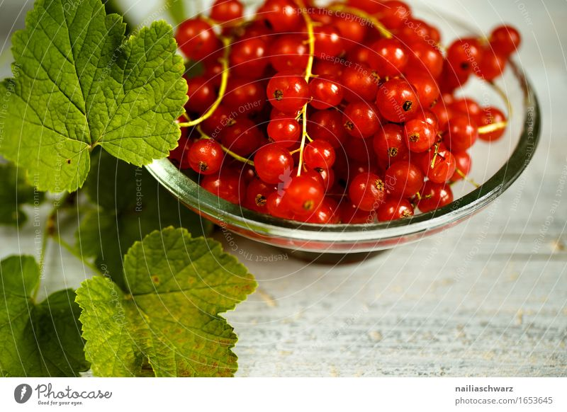 Red Currant Fruit Dessert Jam Redcurrant red currants Nutrition Organic produce Vegetarian diet Diet Fasting Crockery Bowl Mug Fragrance Fresh Healthy Natural