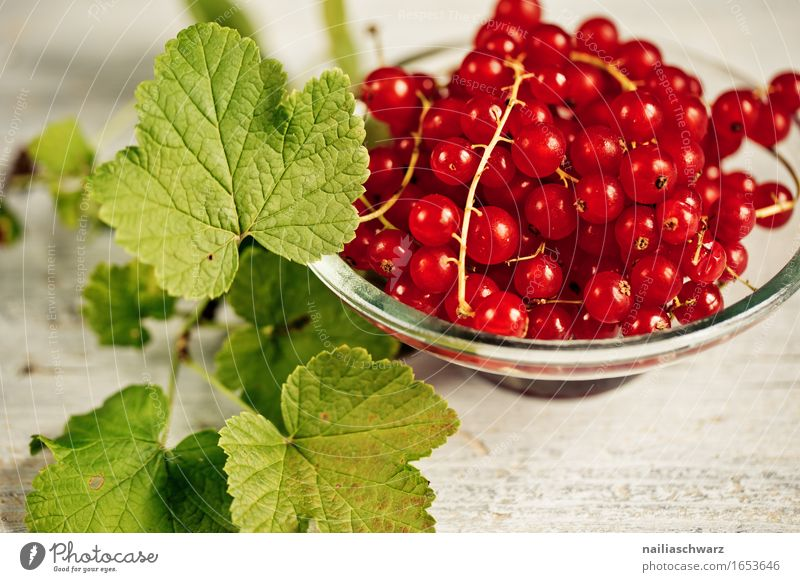 currants Food Fruit Jam Redcurrant Berries Nutrition Organic produce Vegetarian diet Diet Fasting Plate Bowl Healthy Healthy Eating Leaf Agricultural crop