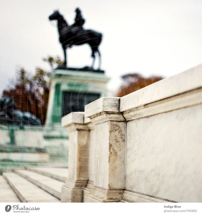 Horseman Colour photo Exterior shot Structures and shapes Deserted Day Blur Shallow depth of field Central perspective Art Sculpture Culture Washington DC USA