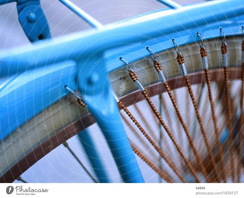 Blue Summer Winter Environment Street Spring Autumn Lifestyle Healthy Metal Transport Elegant Bicycle Success Trip Retro