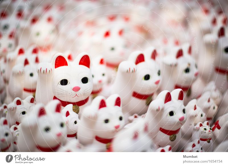 maneki neko Temple Cat Group of animals Kitsch Odds and ends Creepy Cute Red White Happy Happiness Fear Horror luck lucky Bizarre Vacation & Travel Mysterious