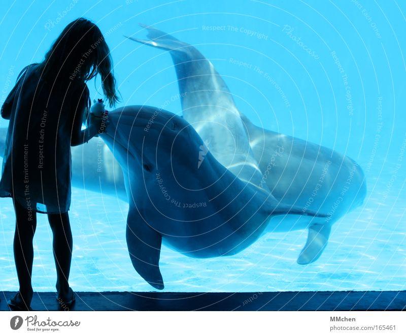 Human being Child Water Girl Blue Joy Animal Playing Happy Pair of animals Underwater photo Happiness In pairs Communicate Swimming pool