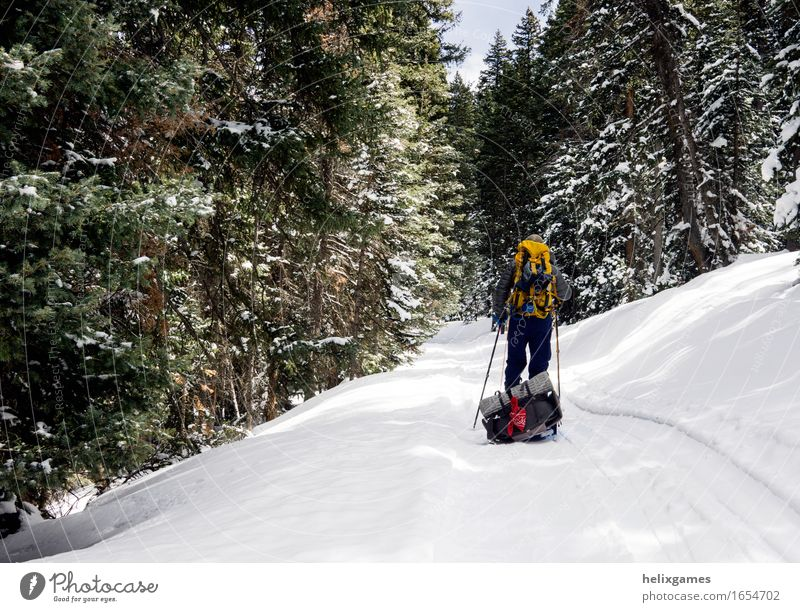 A ski in the woods Life Leisure and hobbies Skiing Hiking Sports Fitness Sports Training Sportsperson Masculine Body 1 Human being Adventure La Sal Mountains