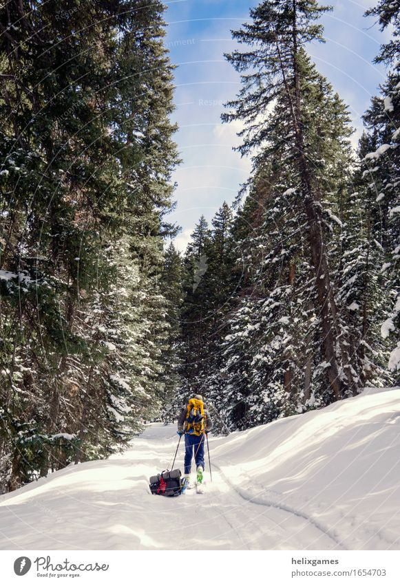 winter trail Hiking Skiing Man Adults 1 Human being 18 - 30 years Youth (Young adults) Nature Sky Winter Tree Mountain Walking La Sal Mountains Utah Moab sled