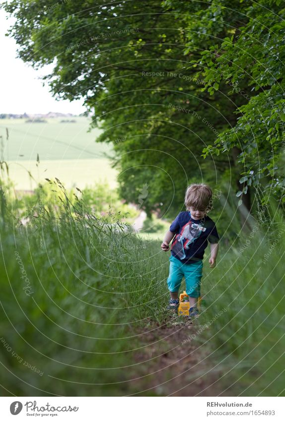 Human being Child Nature Summer Green Landscape Forest Environment Meadow Lanes & trails Boy (child) Playing Small Happy Going Masculine