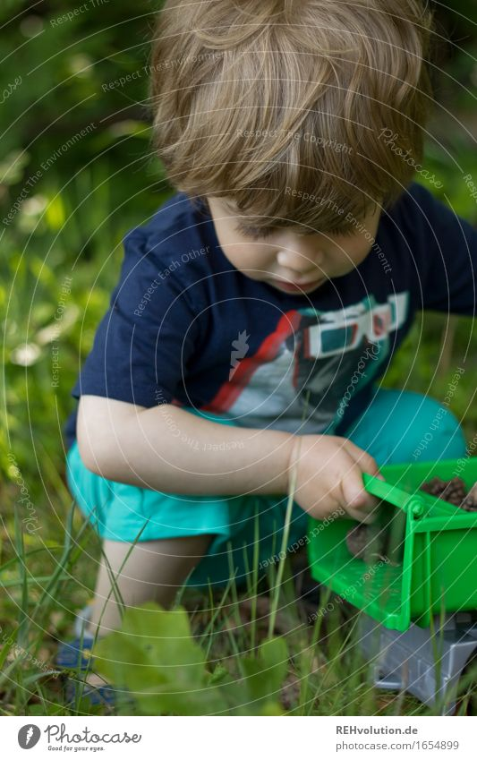 Human being Child Nature Green Joy Forest Environment Meadow Natural Boy (child) Playing Happy Small Freedom Contentment Field