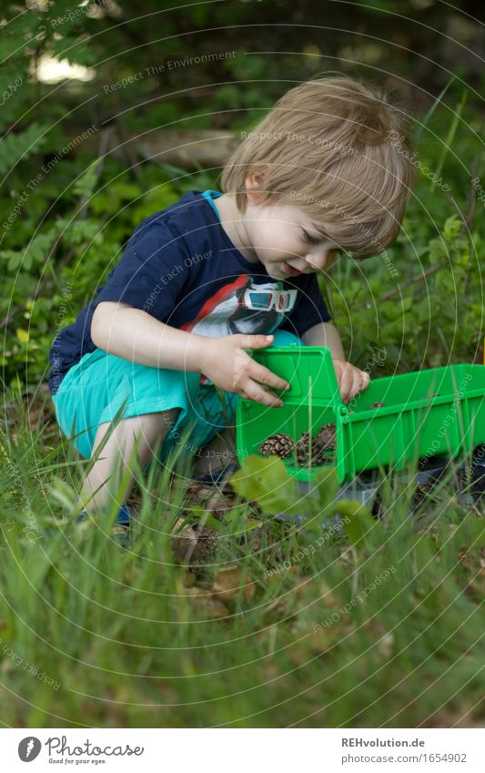 dump truck Human being Masculine Child Toddler Boy (child) 1 1 - 3 years Environment Nature Plant Summer Forest Playing Small Curiosity Green Joy Happy