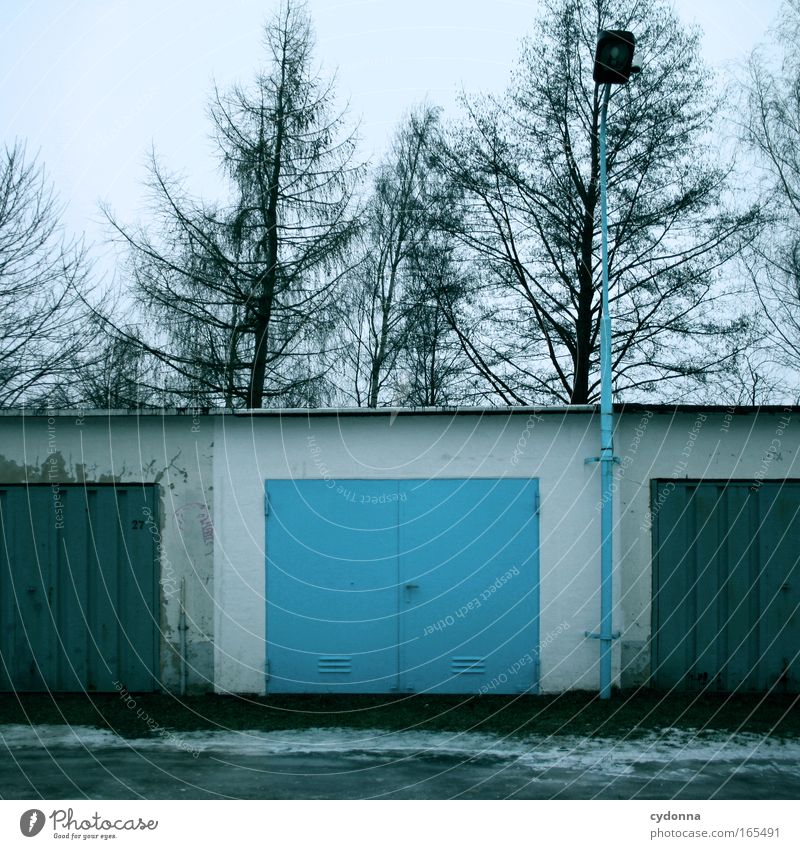 Make blue Colour photo Exterior shot Deserted Copy Space top Day Central perspective Tree Esthetic Design Uniqueness Inspiration Communicate Creativity Life