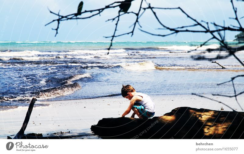 when dreams learn to fly Vacation & Travel Tourism Trip Adventure Far-off places Freedom Boy (child) Infancy Nature Landscape Sky Summer Waves Coast Beach Ocean