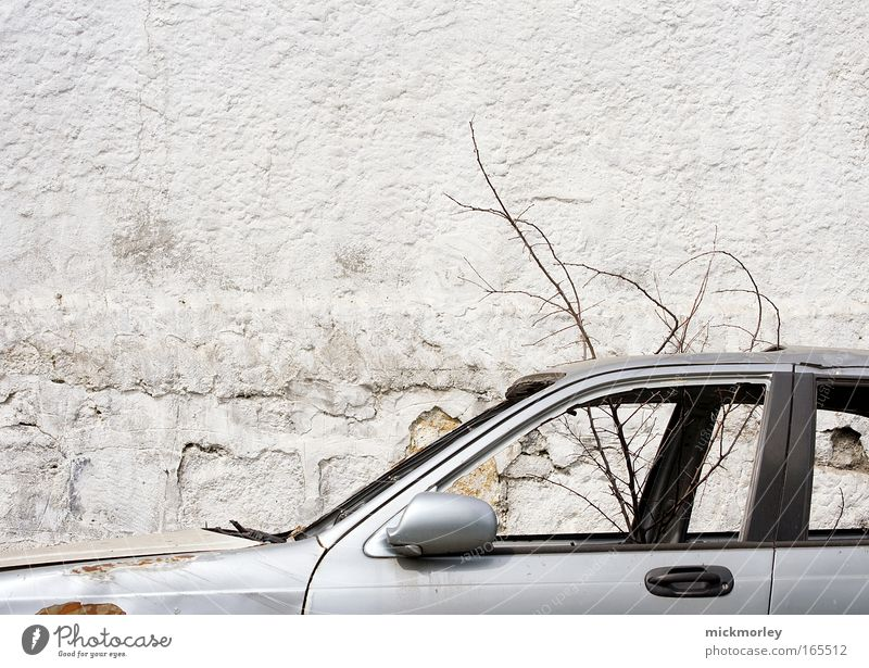 Technology Vs. Nature Colour photo Exterior shot Deserted Day Long shot Forward Tree Street Vehicle Car Observe Esthetic Dirty Cold Broken Curiosity Trashy