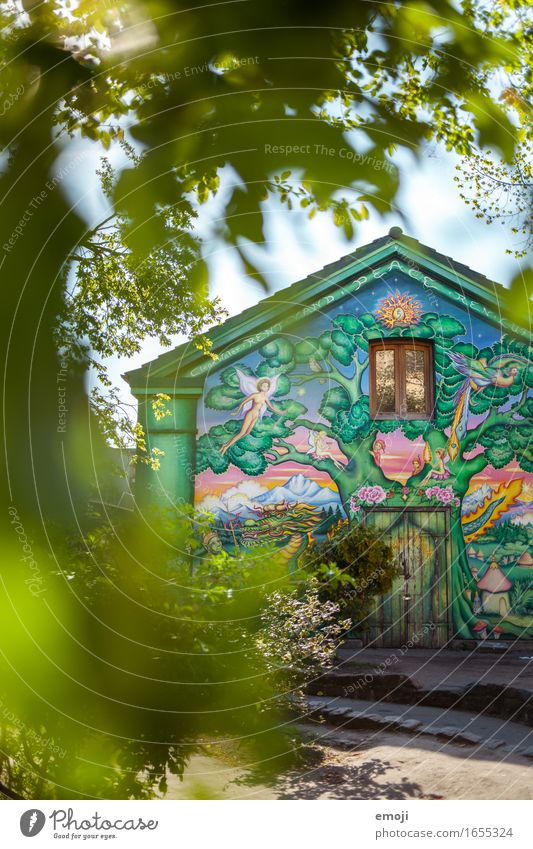 Christiania Environment Nature Beautiful weather Park House (Residential Structure) Wall (barrier) Wall (building) Facade Positive Rebellious Green Graffiti
