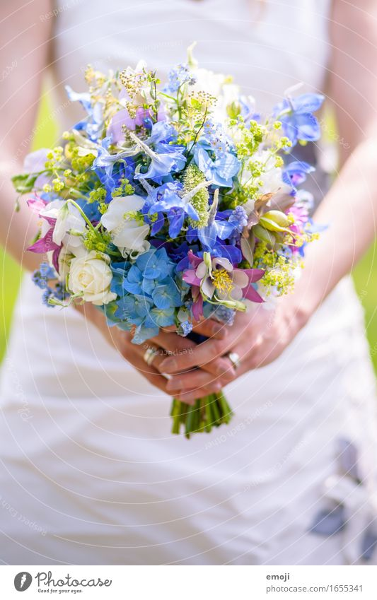 Plant Flower Spring Natural Feasts & Celebrations Fresh Wedding Bouquet