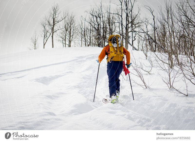 Near the peak Vacation & Travel Adventure Winter Snow Mountain Sports Climbing Mountaineering Skiing Human being Man Adults 1 18 - 30 years Youth (Young adults)