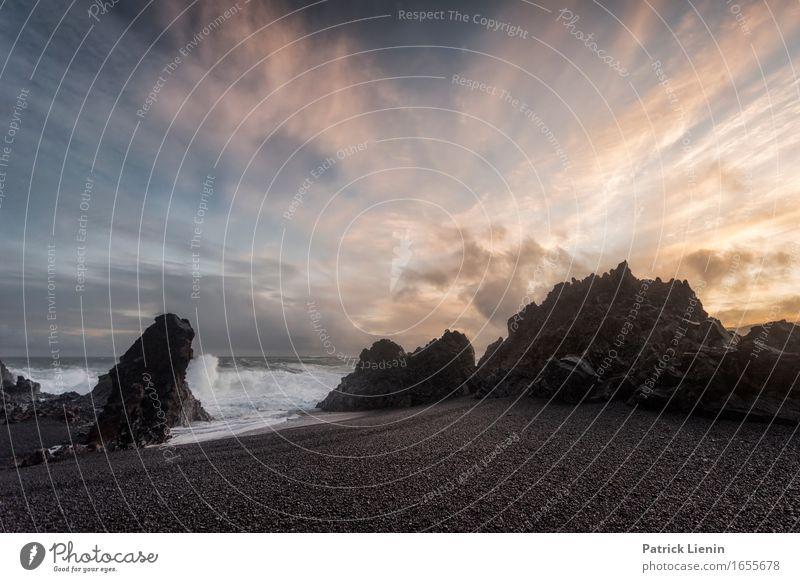 Djúpalónssandur Beautiful Life Vacation & Travel Adventure Beach Ocean Island Waves Environment Nature Landscape Animal Earth Sky Clouds Climate Climate change