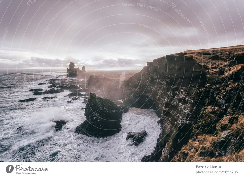 Snæfellsnes Beautiful Life Vacation & Travel Adventure Beach Ocean Island Waves Environment Nature Landscape Animal Earth Sky Clouds Climate Climate change
